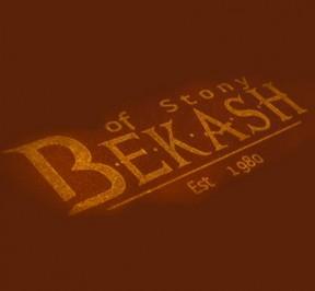 bekash-square